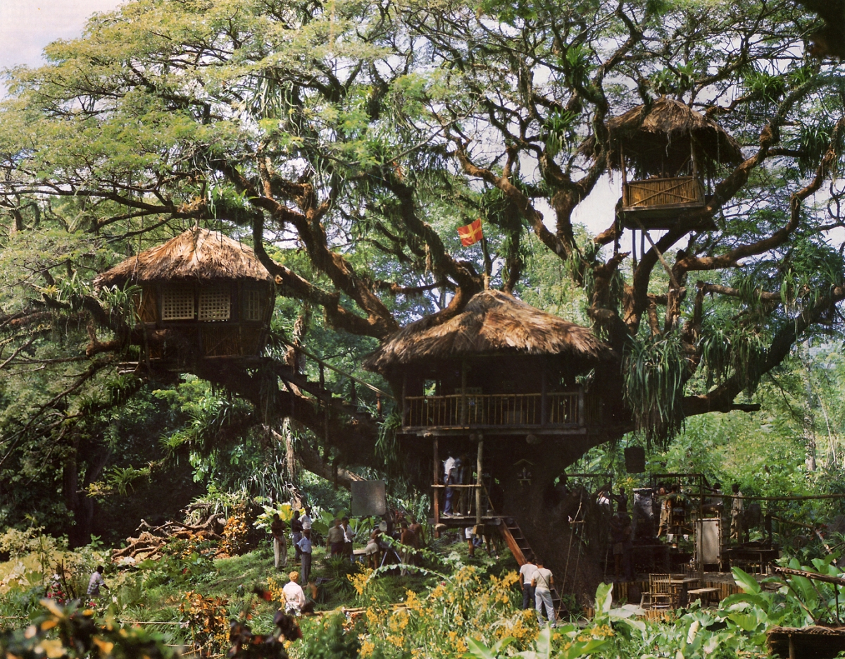 The Real Swiss Family Robinson Treehouse in Tobago